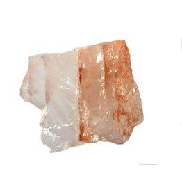 Red healer ruw 50 - 100 gram