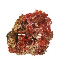 Crocoiet cluster 5 - 15 gram