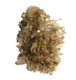 Citrien cluster 20 x 15 x 12 cm / 3,07 kg