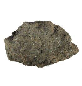 Chrysant steen ruw 500 - 1000 gram