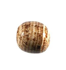Aragoniet (bruin) steen getrommeld 15 - 25 gram