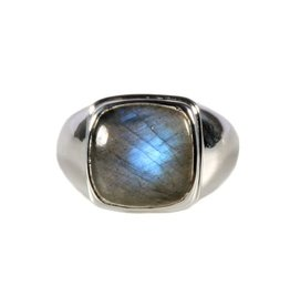 Zilveren ring labradoriet maat 21 1/2 | vierkant 1,4 x 1,4 cm