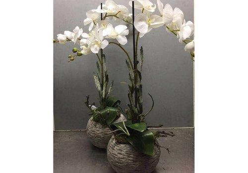 Zijden plantenarrangement orchidee