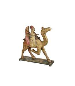 Travelling Camel