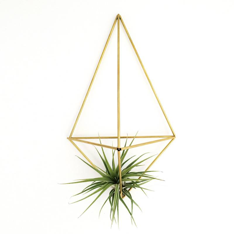 Airplants DIY Himmeli Wall Planter Facet