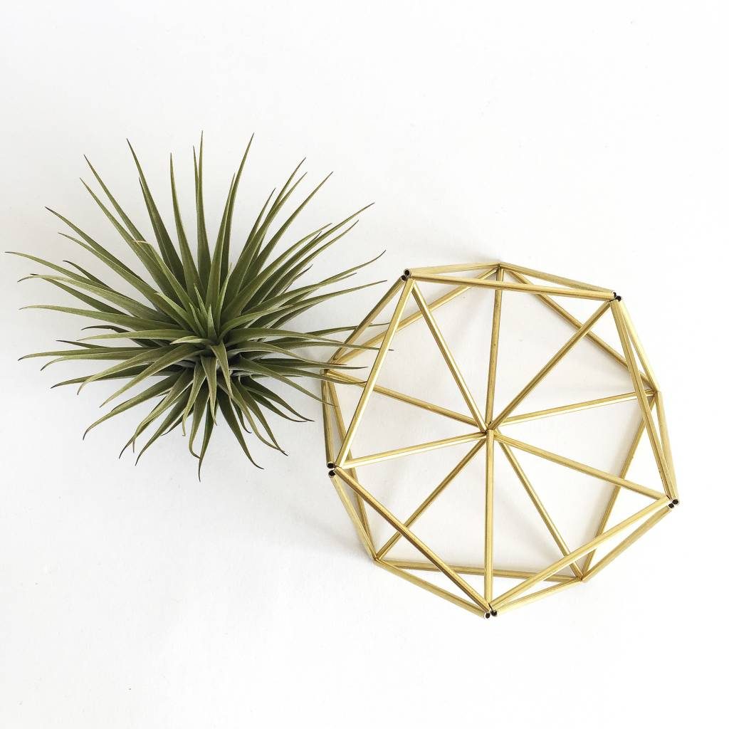 Airplants DIY Himmeli Table Planter Mars