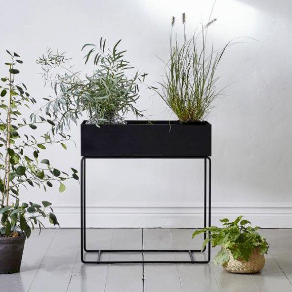 Fermliving Boîte de plante - large