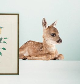 KEK Amsterdam Autocollants bambi