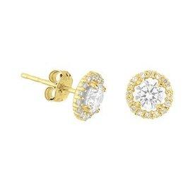 Gouden oorknoppen 40.18272