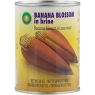 XO Bananenbloem op water 565g
