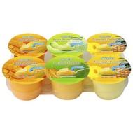 Cocon Pudding met fruitstukjes 708g