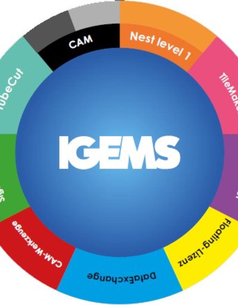 IGEMS IGMES