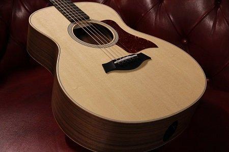 Taylor GS MINI gitaren zijn populair!
