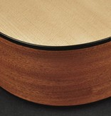 Richwood Richwood D-40 | Master Series handgebouwde Dreadnought gitaar