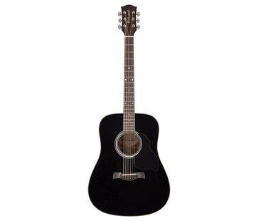 Richwood Richwood D-40-BK Master Series zwarte akoestische gitaar