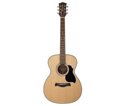 Richwood Richwood A-40 Auditorium model gitaar