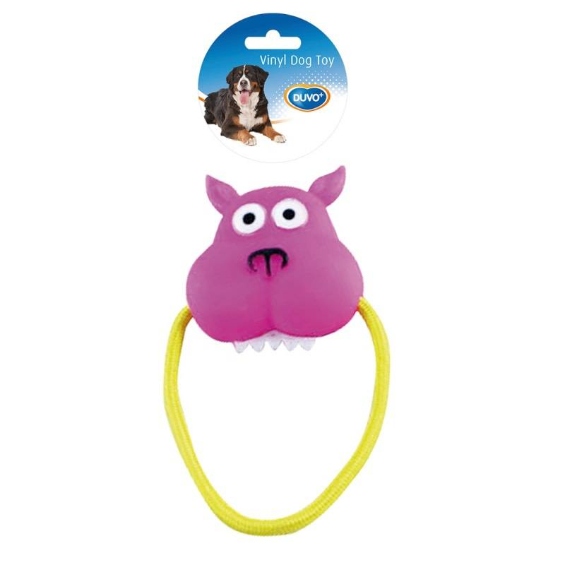 Laroy vinyl speelgoed aan trekring roze/paars