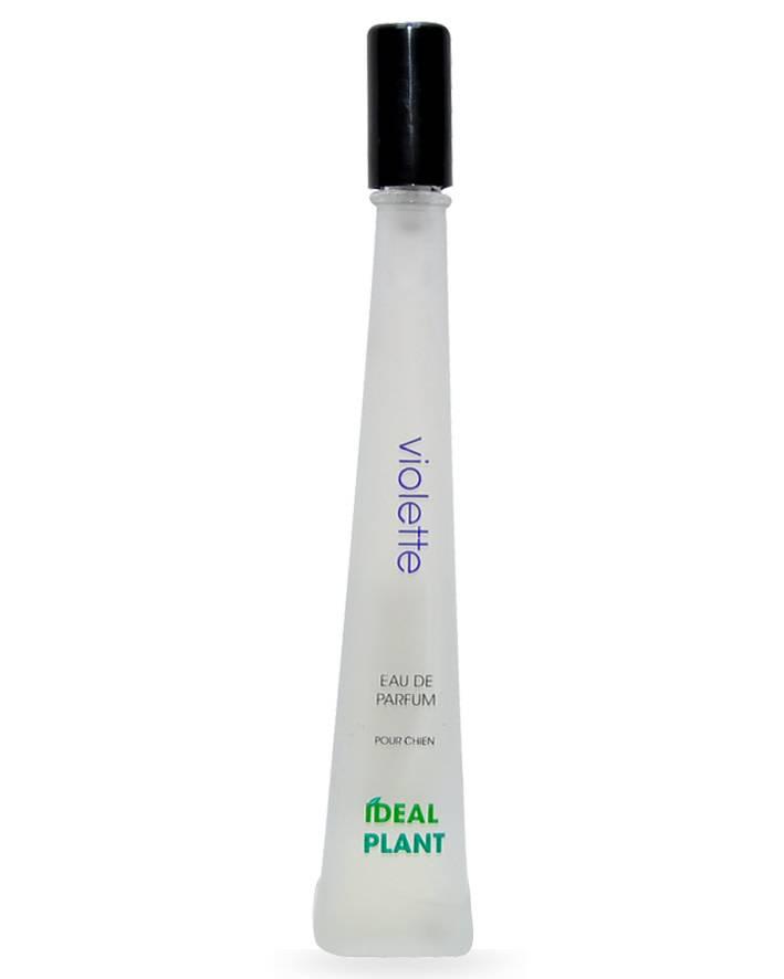 Ideal Plant parfum ideal plant