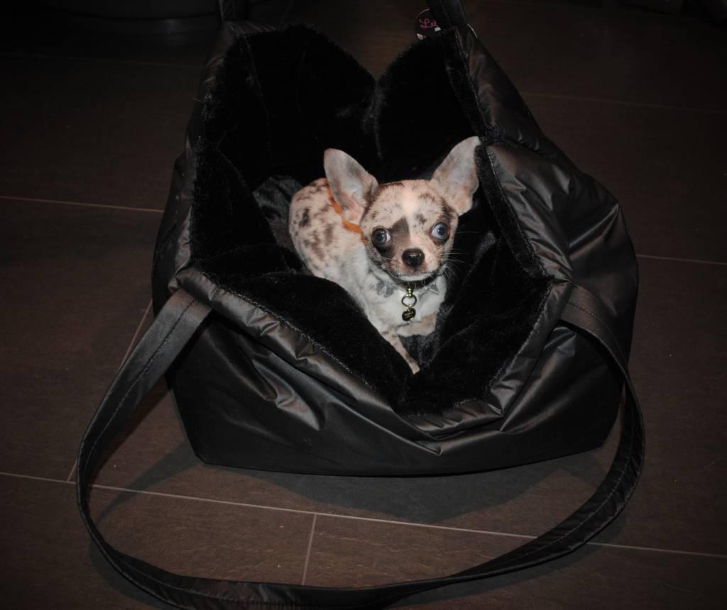 Lella Su karem's bag