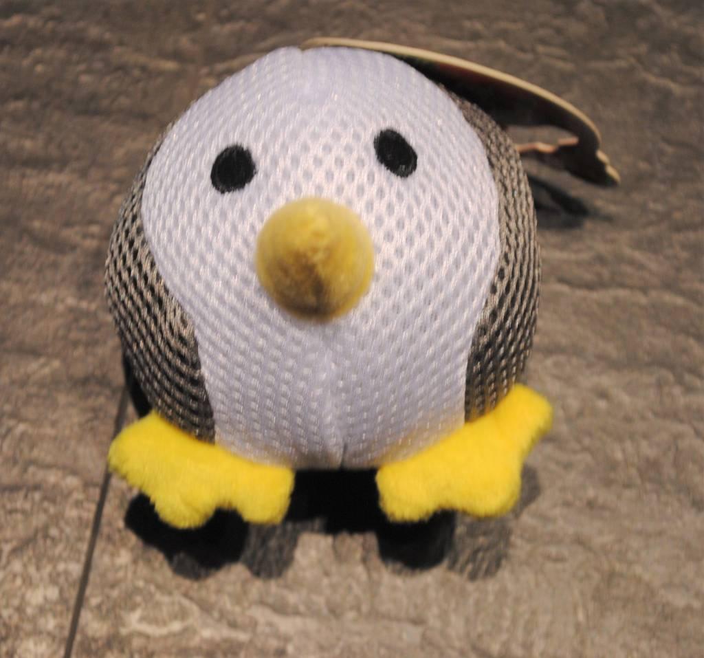 Croci sogg pinguin