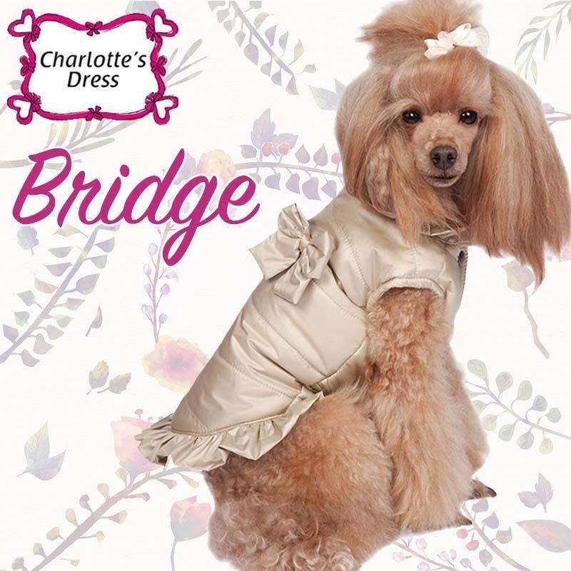 Charlotte's dress bridge