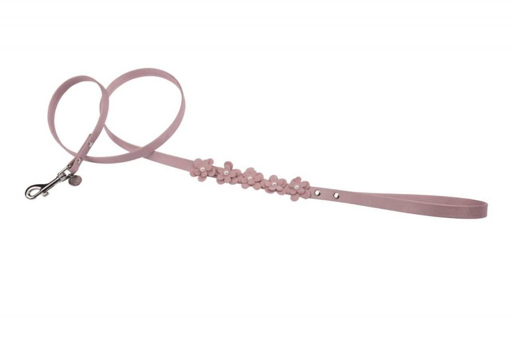 Charlotte's dress lijn rosalie