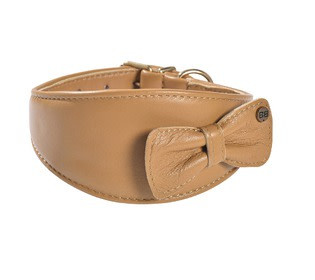 Bobby Cannifrance collier victoire camel