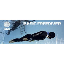 Basic Freediving
