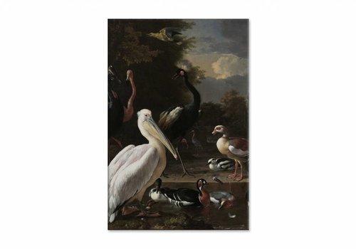 Een pelikaan en ander gevogelte bij een waterbassin • staande afdruk op canvas