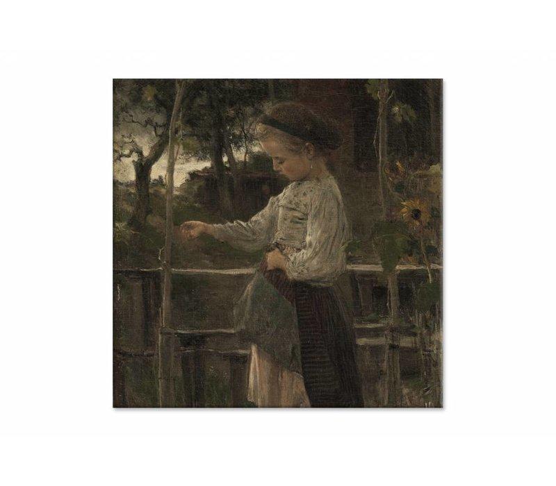 Kippetjes voeren • vierkante afdruk op canvas