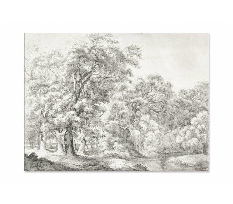 Landschap met bomen bij water • liggende afdruk op plexiglas