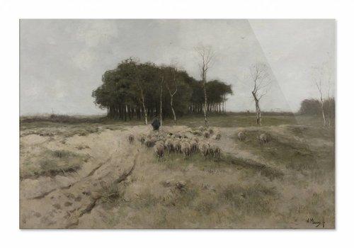 Heide bij Laren • liggende afdruk op plexiglas