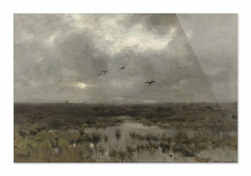 Het moeras • liggende afdruk op plexiglas
