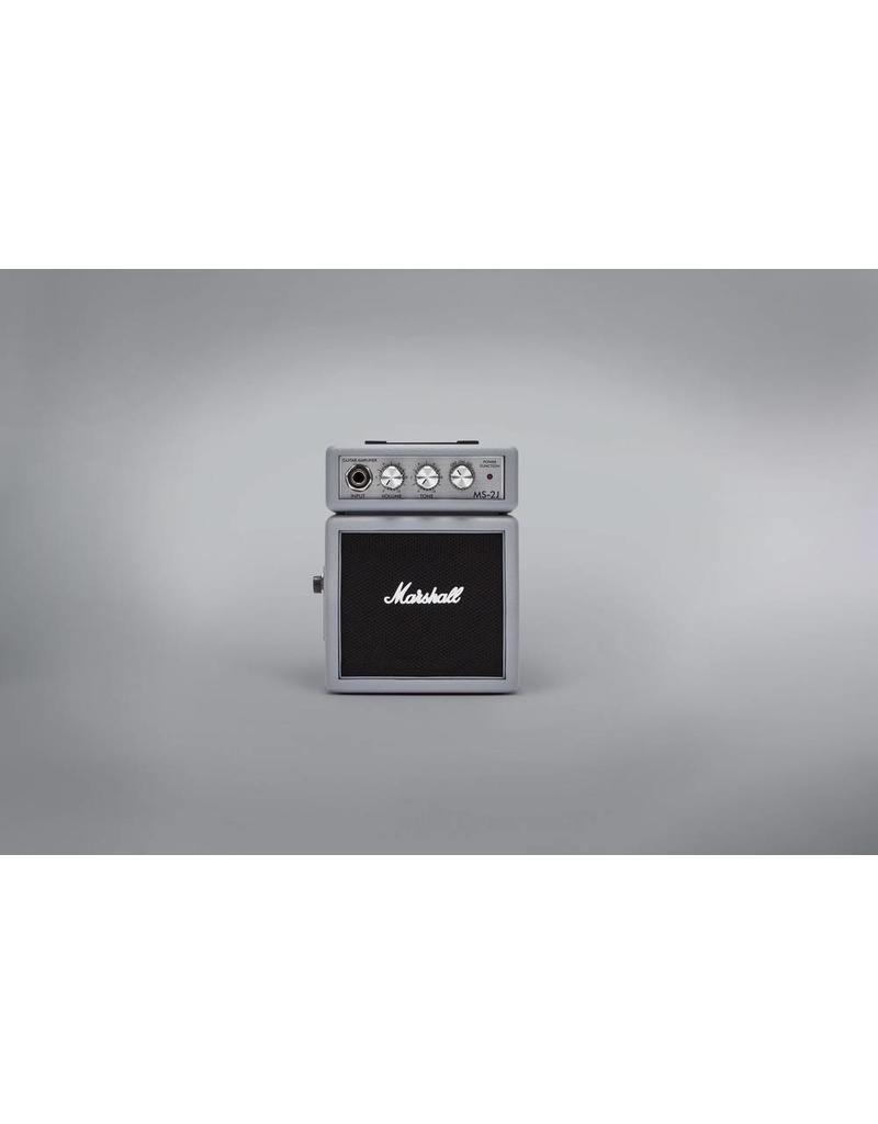 Marshall/Eden Silver Micro Amp, MS-2J