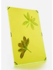 Flowerpress frame bright yellow Large