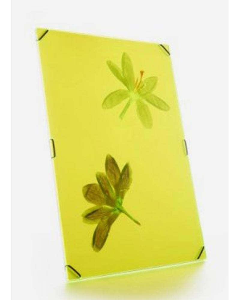 Flowerpress hue frame bright yellow Large