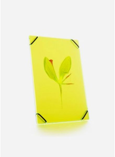 Flowerpress heu frame bright yellow small