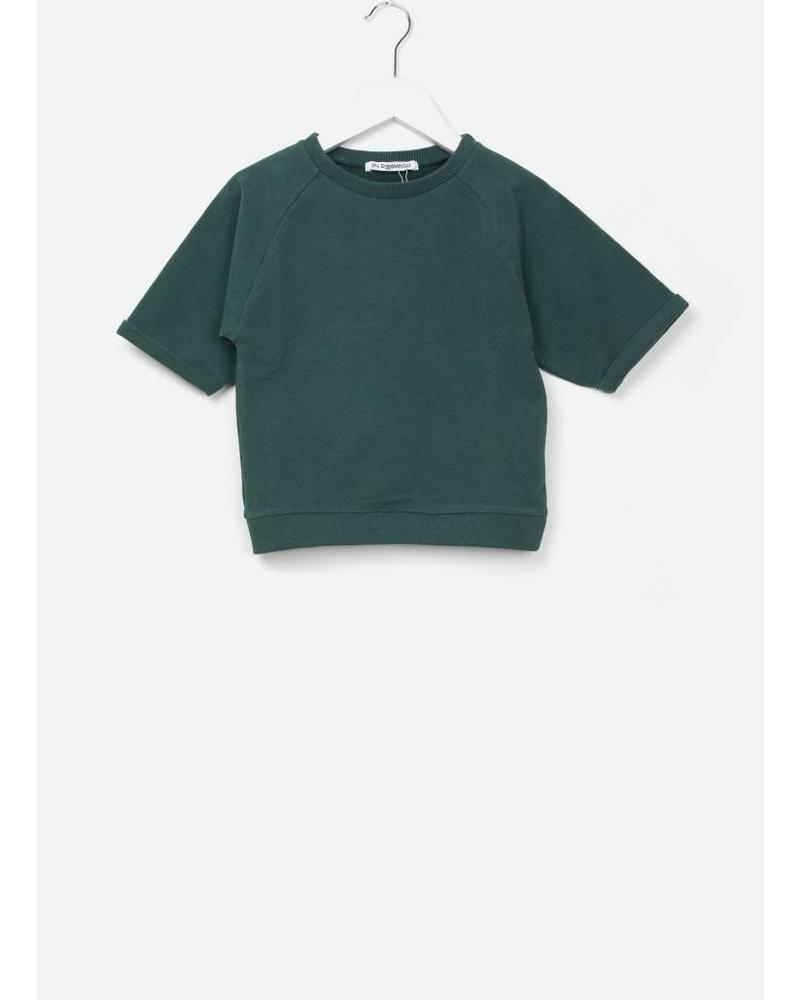 Mingo cropped sweater rain forest green sweat