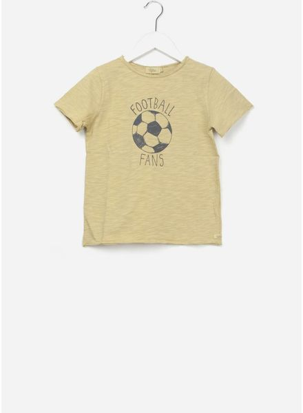 Buho cesar football honey