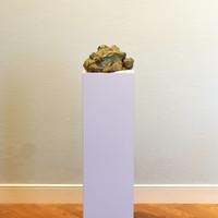 Pieter Vanden Daele - Sleeping frog