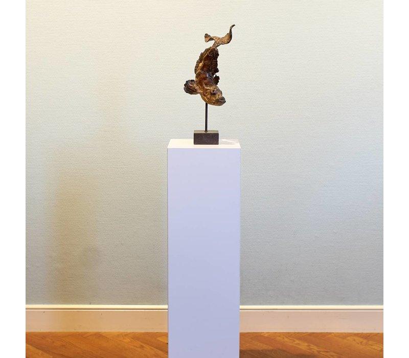 Pieter Vanden Daele - Pietro