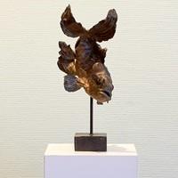 Pieter Vanden Daele - Kleine koikarper