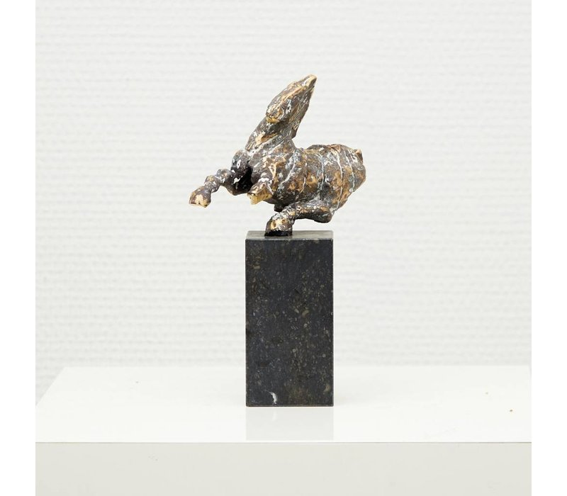 Gerard Engels - Paardje