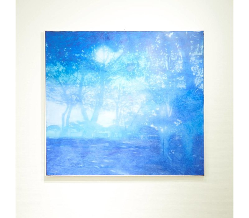 Enrico Ingenito - Blue forest