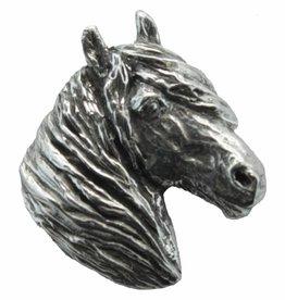 DTR Icelandic horse