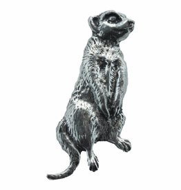 DTR Meerkat