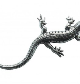 DTR Lizard