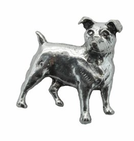 DTR Jack Russell Terrier