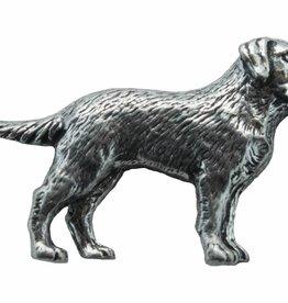 DTR Labrador