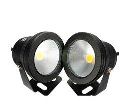 12V LED-belysning för utomhusbruk